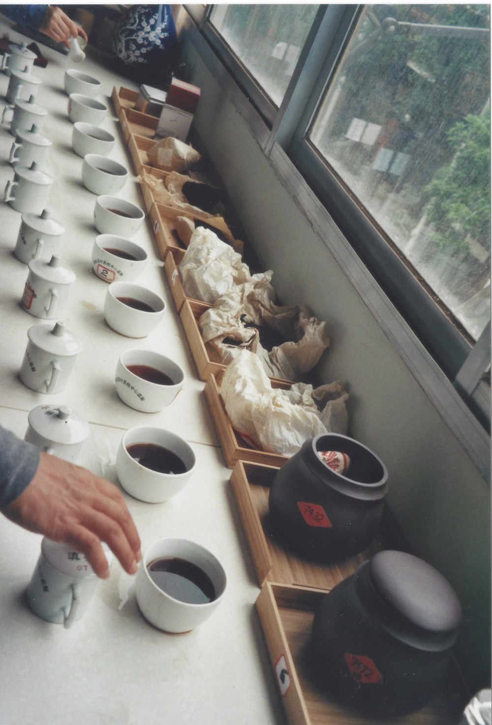 Competition Pu-erh brewing, Kunming