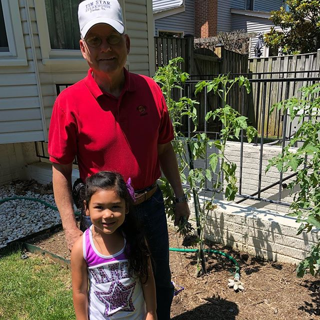 Checking out grandpa's tomato plants