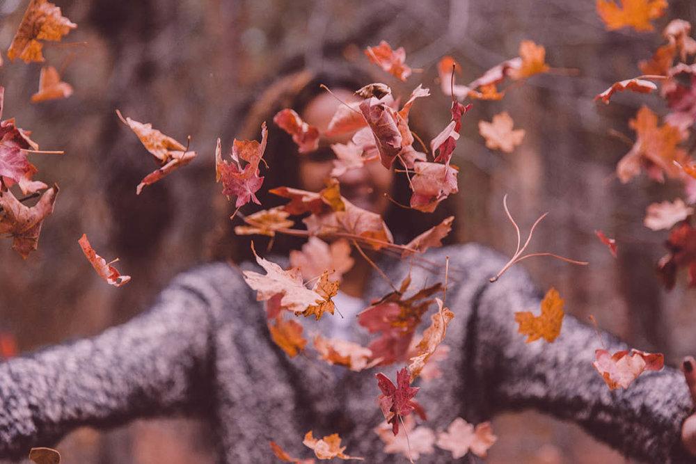 fall - BLOG.jpg