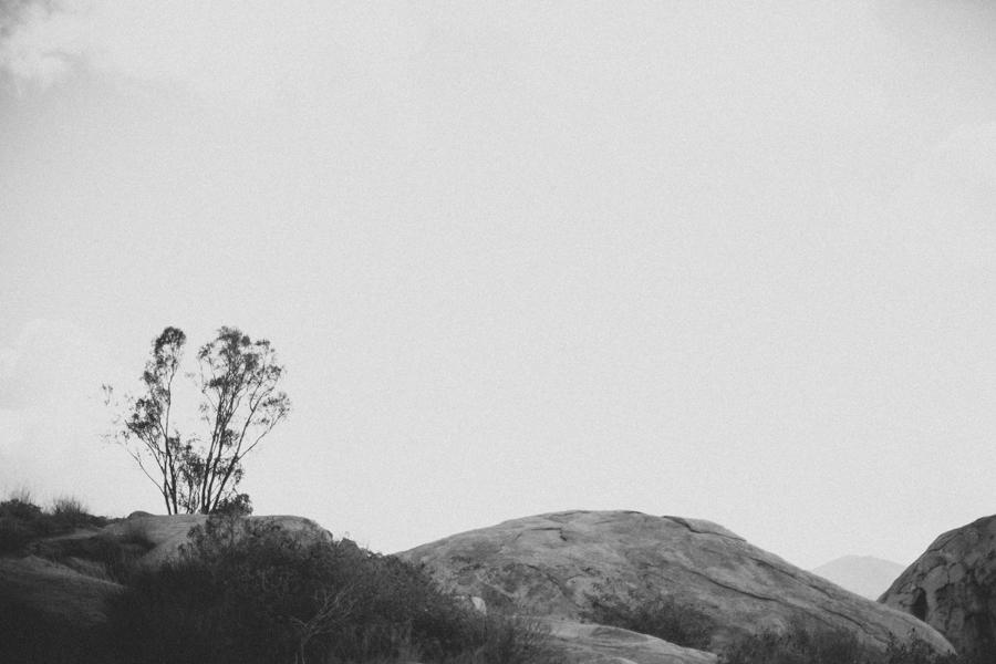 Jen_Wojcik_Photography-31