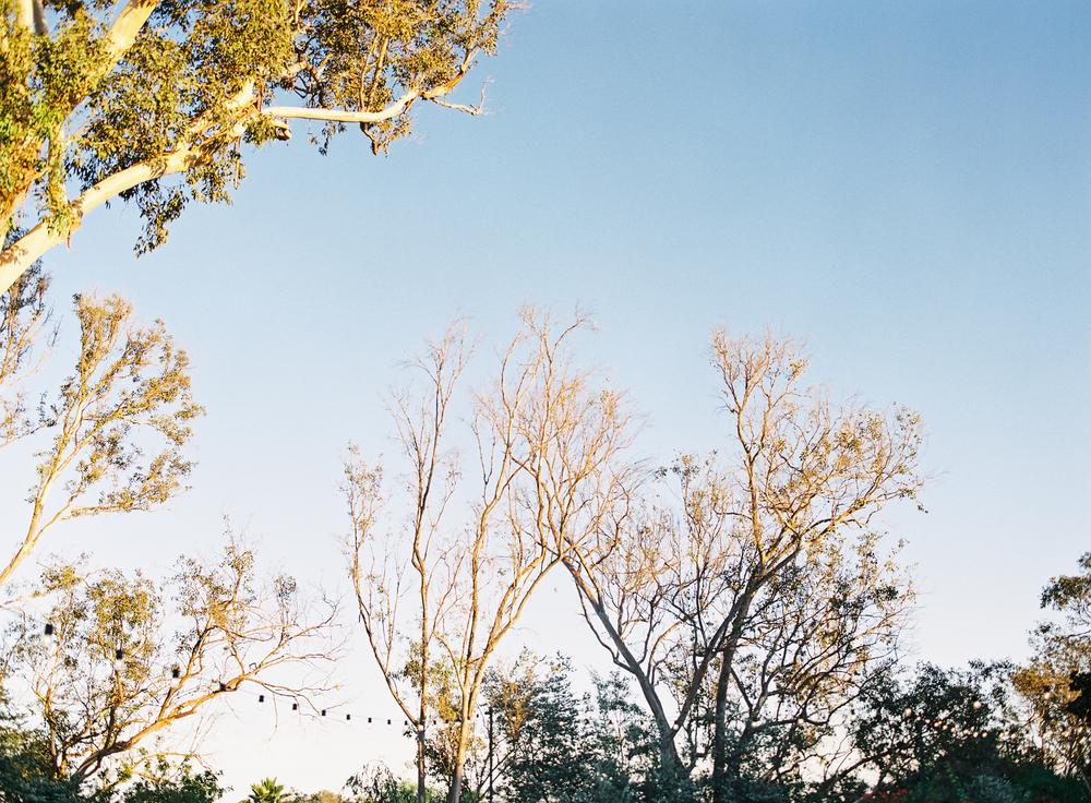 Jen Wojcik Photography-91.jpg