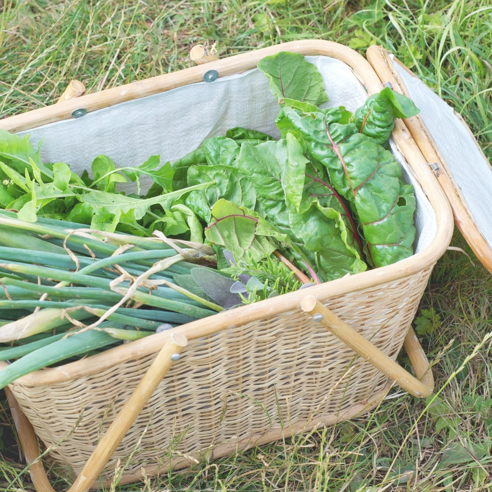 1//. these allotment goodies harvested my Harriet & myself at the weekend - because they made a pretty ace lunch!