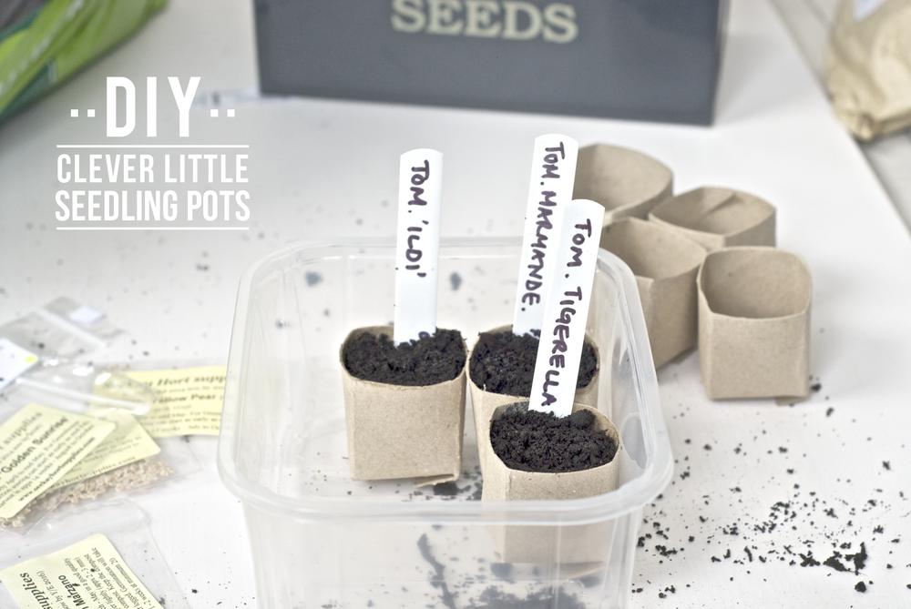 seedling pots-01.png