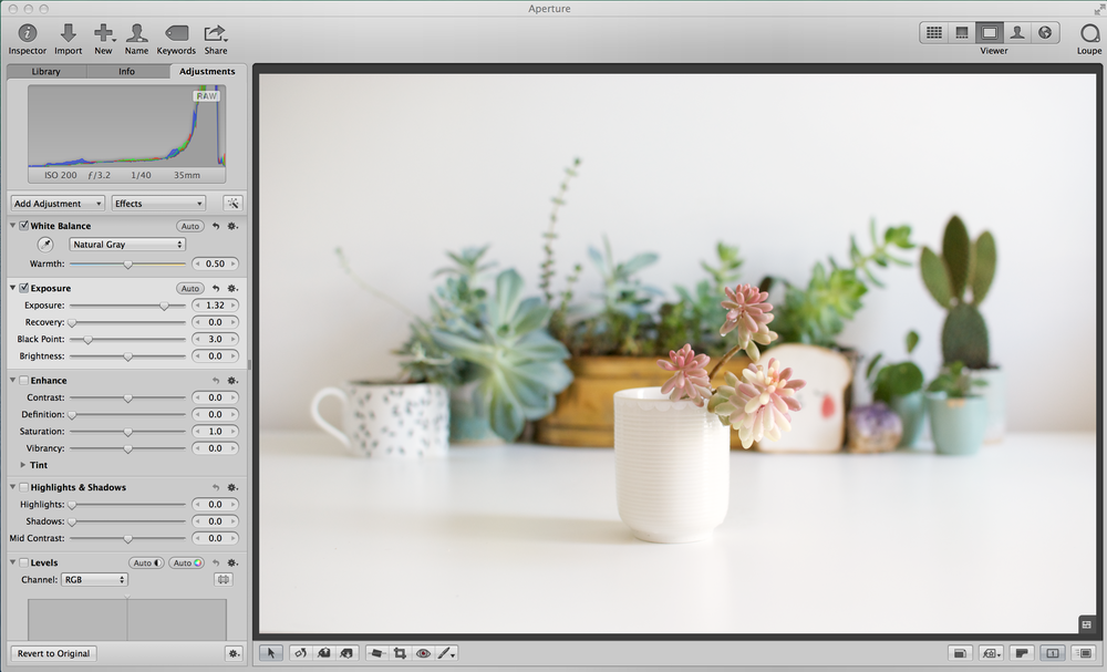 I've adjusted the exposure from 0.0 to 1.32 - this takes those levels right to the edge of the panel, any further and I would start over exposing certain colours - within this image, over exposing it would bleach out the white pot the succulent is in and lose
