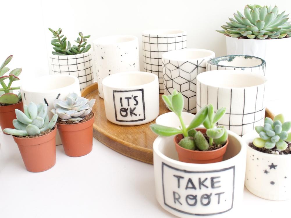 planters 1.jpg