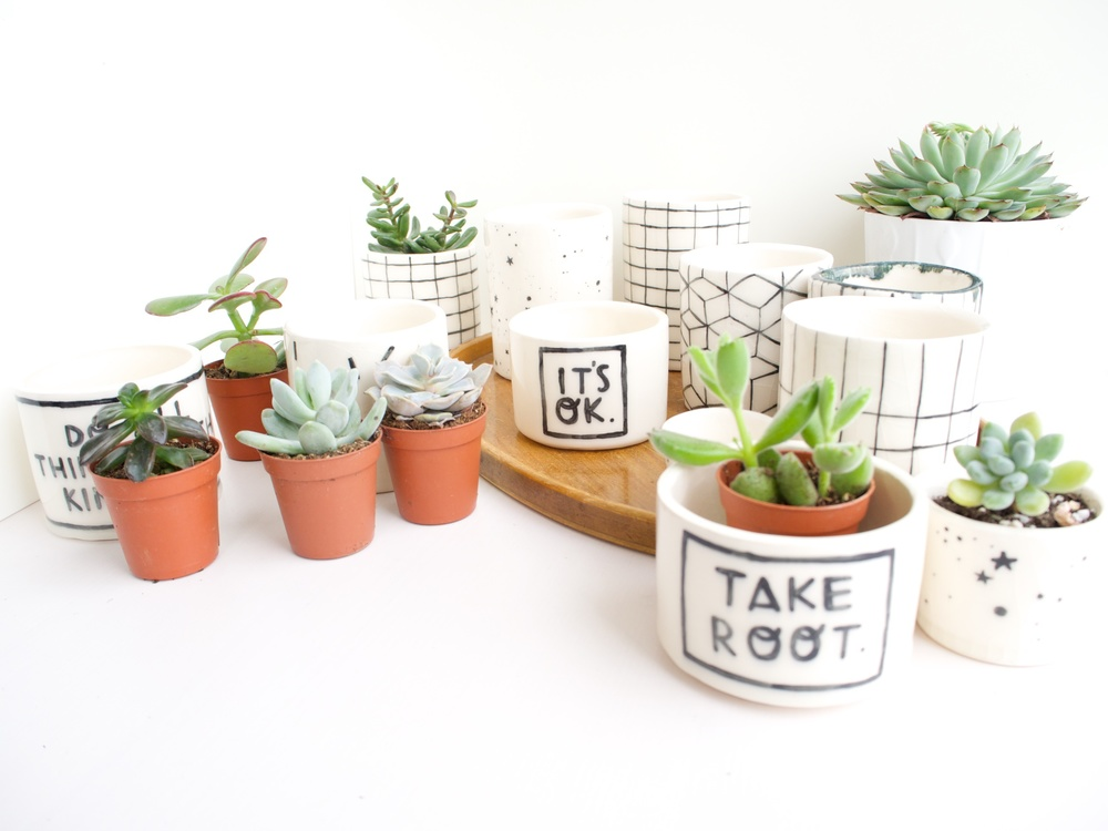 planters 2.jpg