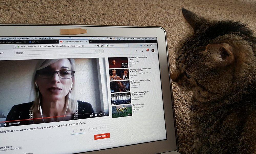 With Simona's cat.jpg