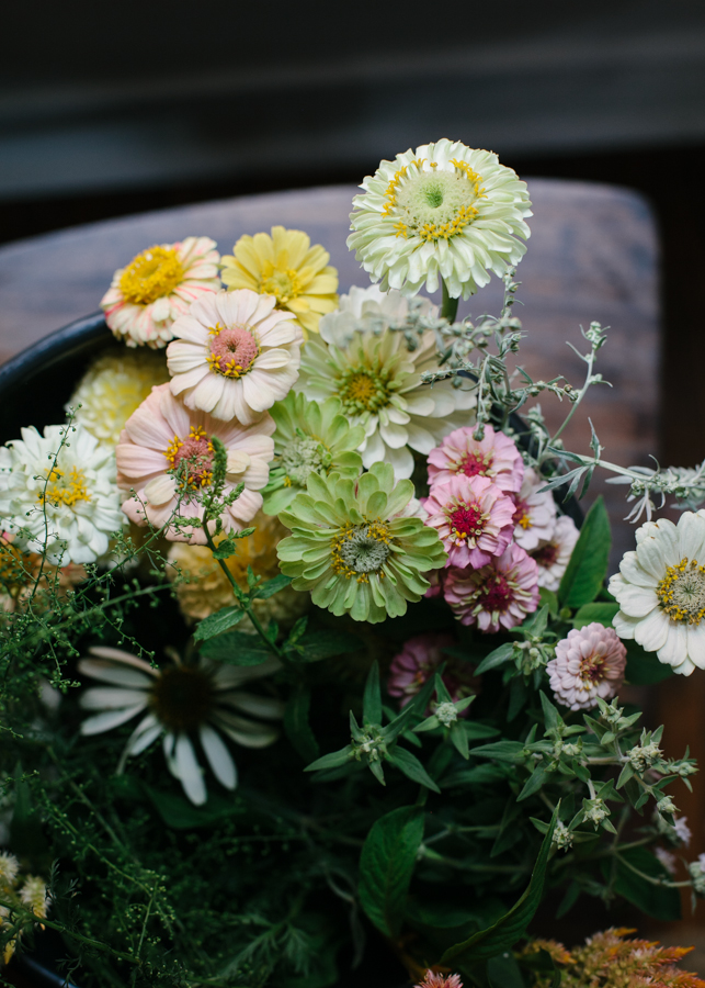 Humble Flowers-5.jpg