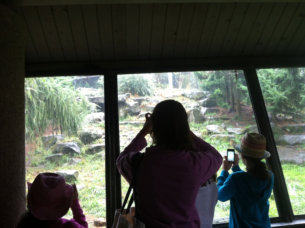 Visitors to the Woodland Park Zoo, 2013.