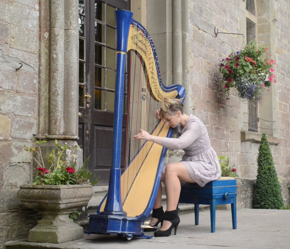 Jemima Phillips Harpist - Clearwell Castle Steps - A Thousand Years
