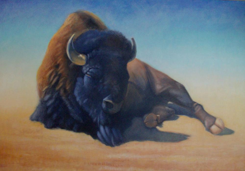 One Buffalo