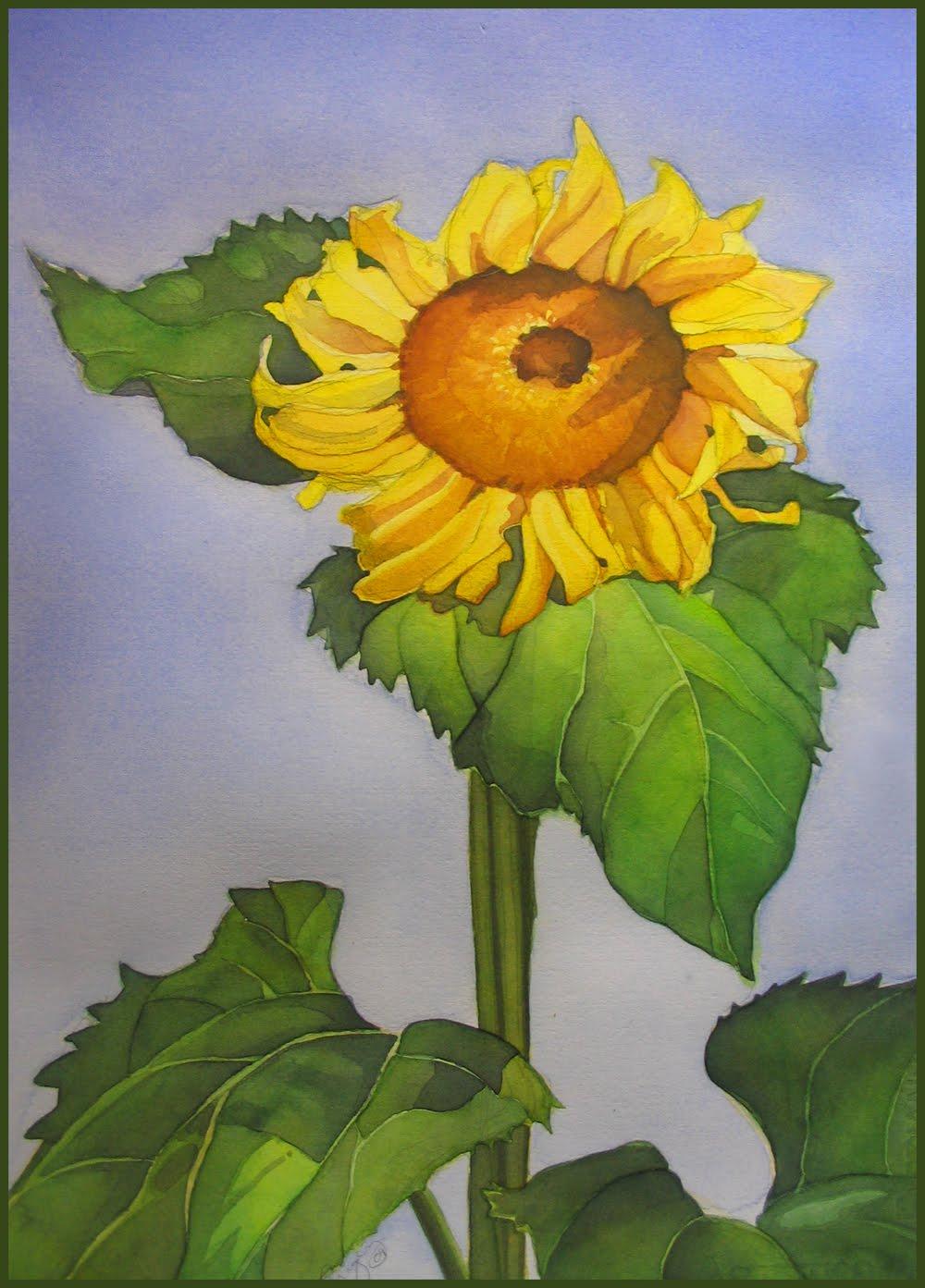 Sunflower copy.jpg