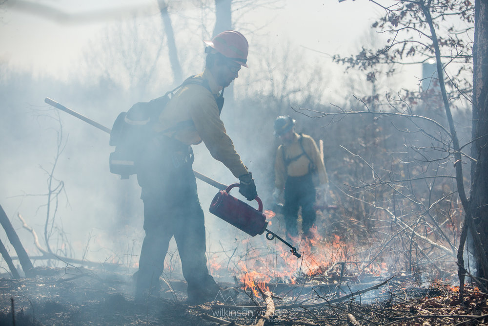 Controlled burns by TNC and the USFS near Elizabethtown, Kentucky, at the Eastview Barrens Nature Preserve.