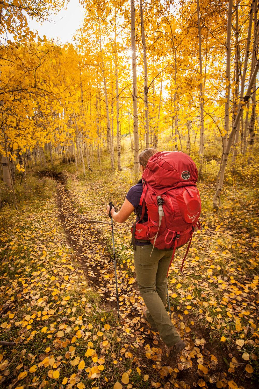 A fall hike through the Rampart Hills trails.