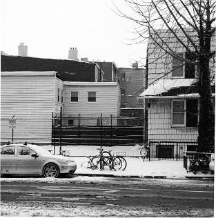 _0008_Day 10 # brooklyn.jpg