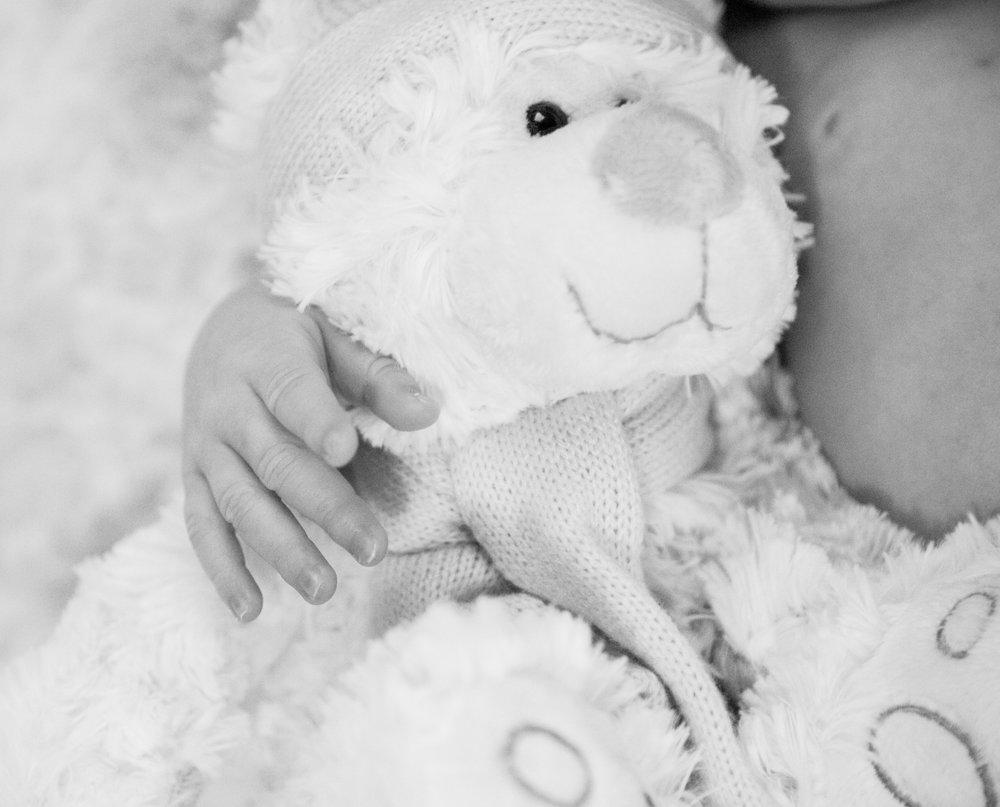SaraKardooniPortrait-Newborn-7.jpg