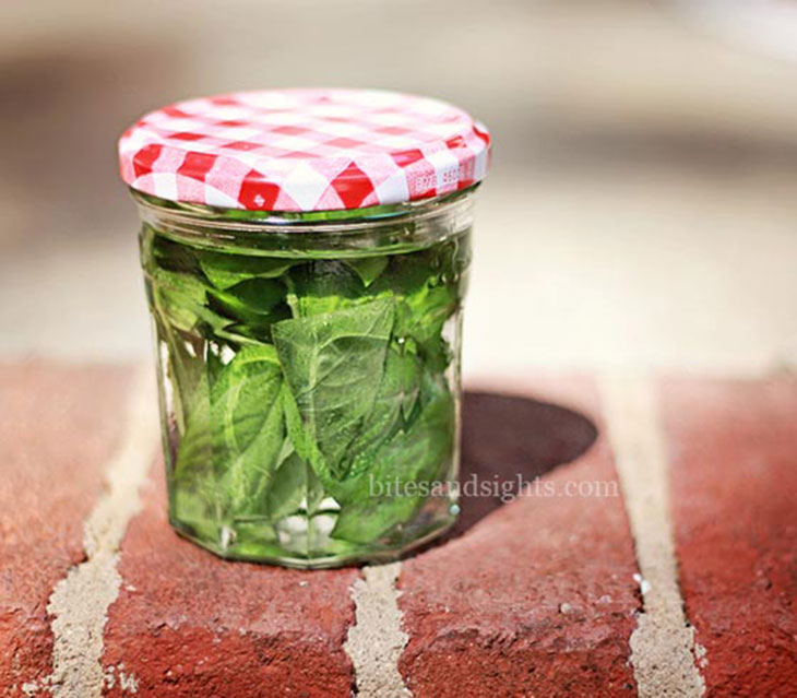 basil infused vodka in a jar