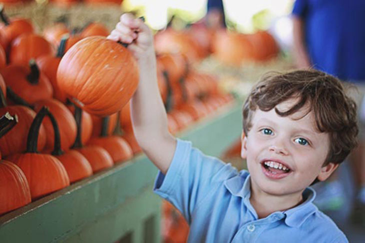 benny picks out a pumpkin at the farmers market