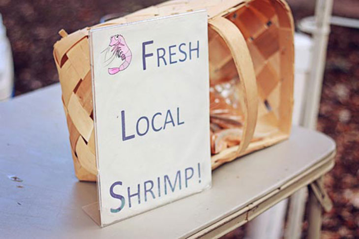 Charleston Farmer's Market on Marion Square - Fresh Local Shrimp!