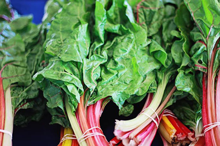 Way of Life Farm's Swiss Chard Caught My Eye