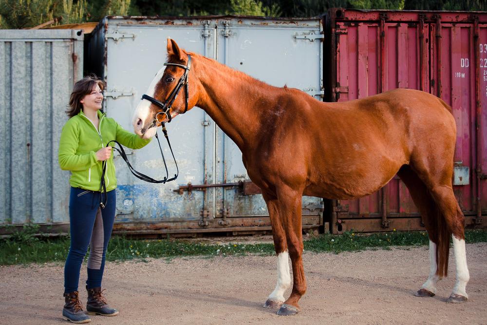 tierfotograf-pferde-outdoorshooting-der-fotograf-nürnberg2.jpg