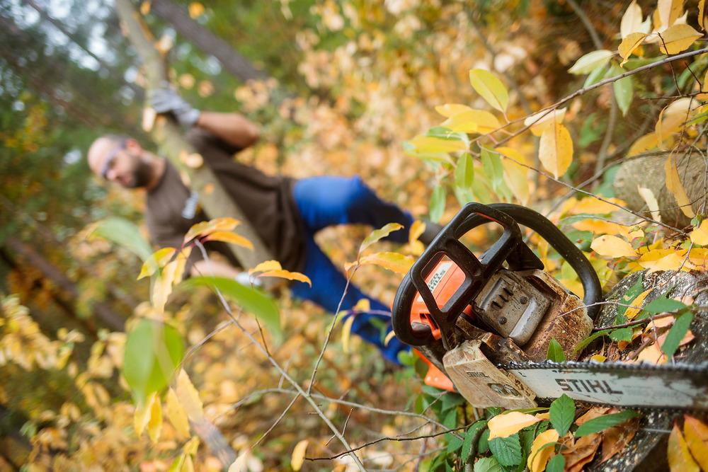 naturfotograf-outdoorshooting-der-fotograf-nbg (5).jpg
