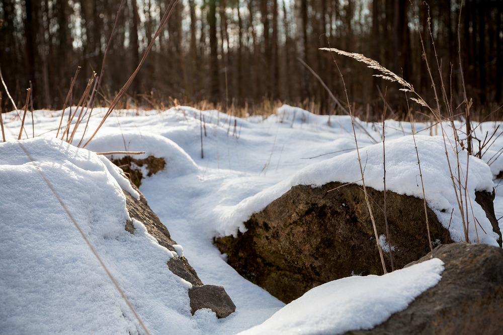 naturfotograf-outdoorshooting-der-fotograf-nbg (11).jpg