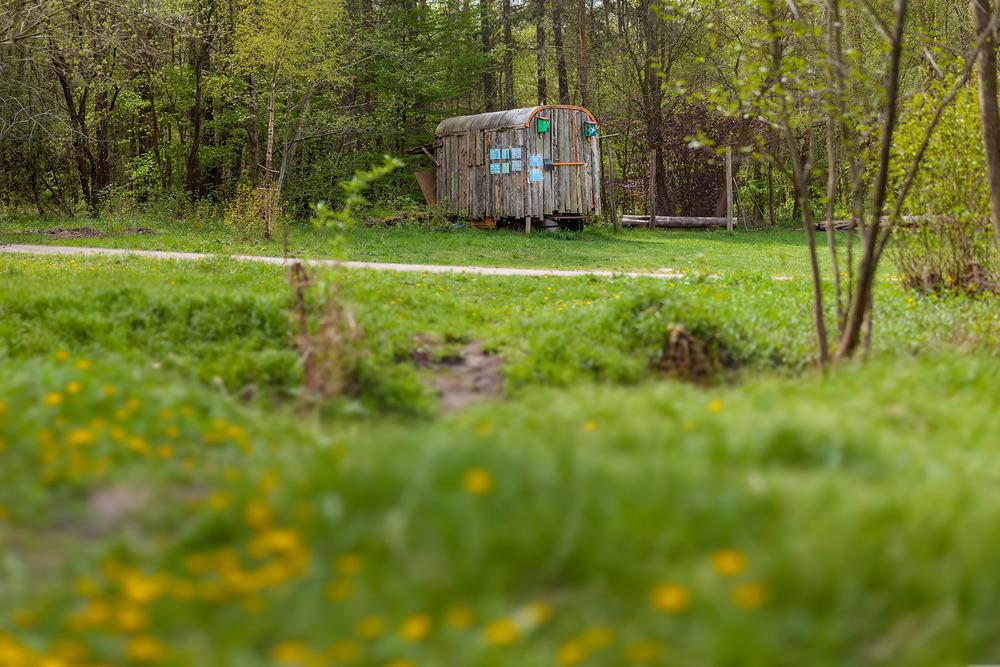 naturfotograf-outdoorshooting-der-fotograf-nbg (21).jpg