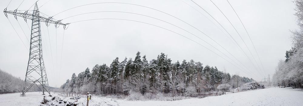 naturfotograf-outdoorshooting-der-fotograf-nbg (24).jpg