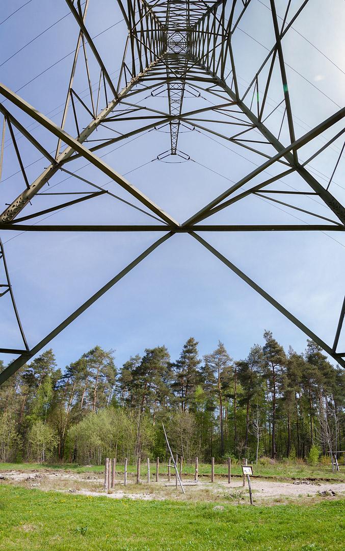 naturfotograf-outdoorshooting-der-fotograf-nbg (25).jpg