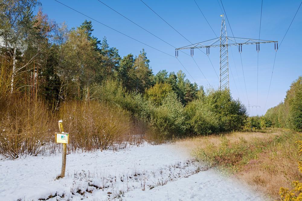 naturfotograf-outdoorshooting-der-fotograf-nbg (26).jpg