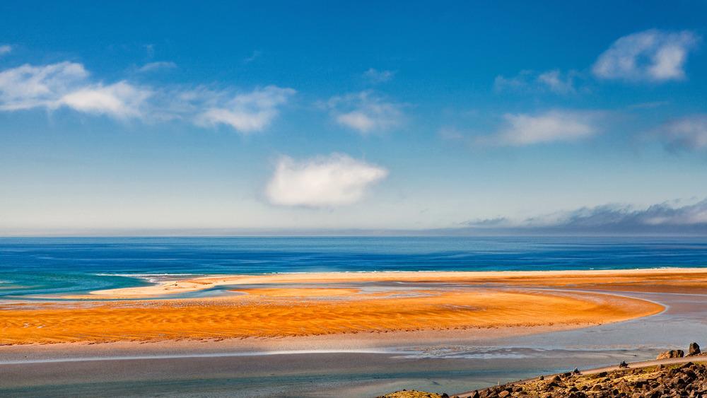 Rauðisandur - der leuchtende Strand Islands
