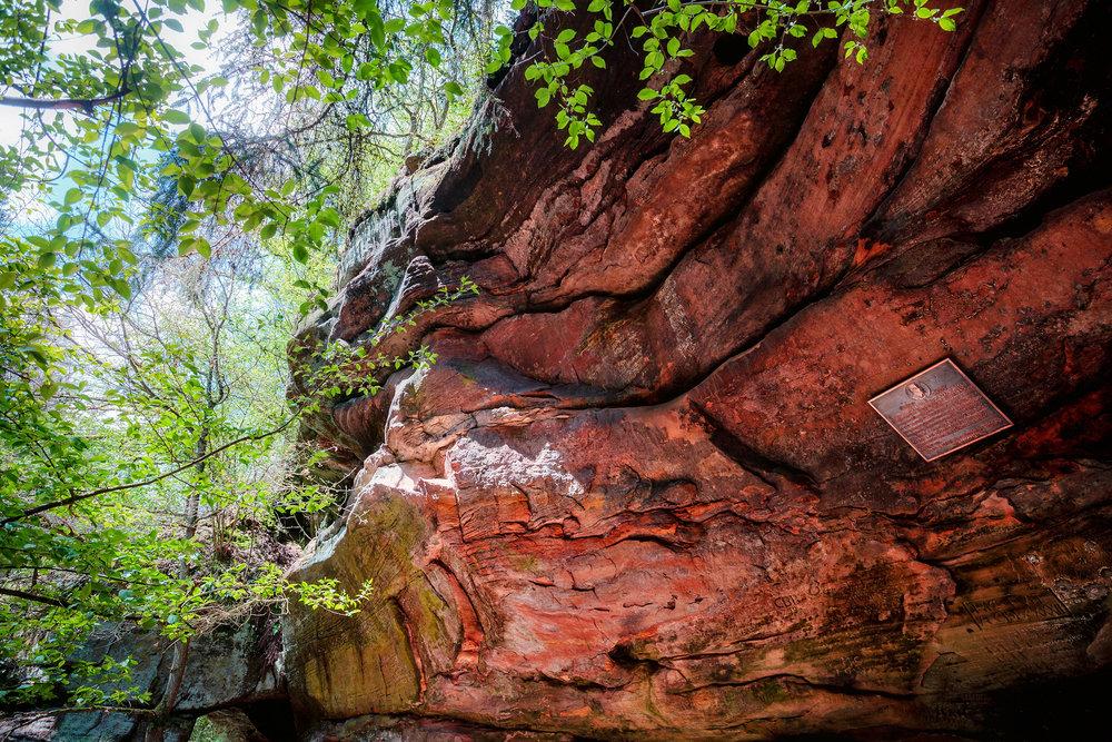 Naturfotografie-Franken-der-Fotograf-in-der-Nähe3.jpg