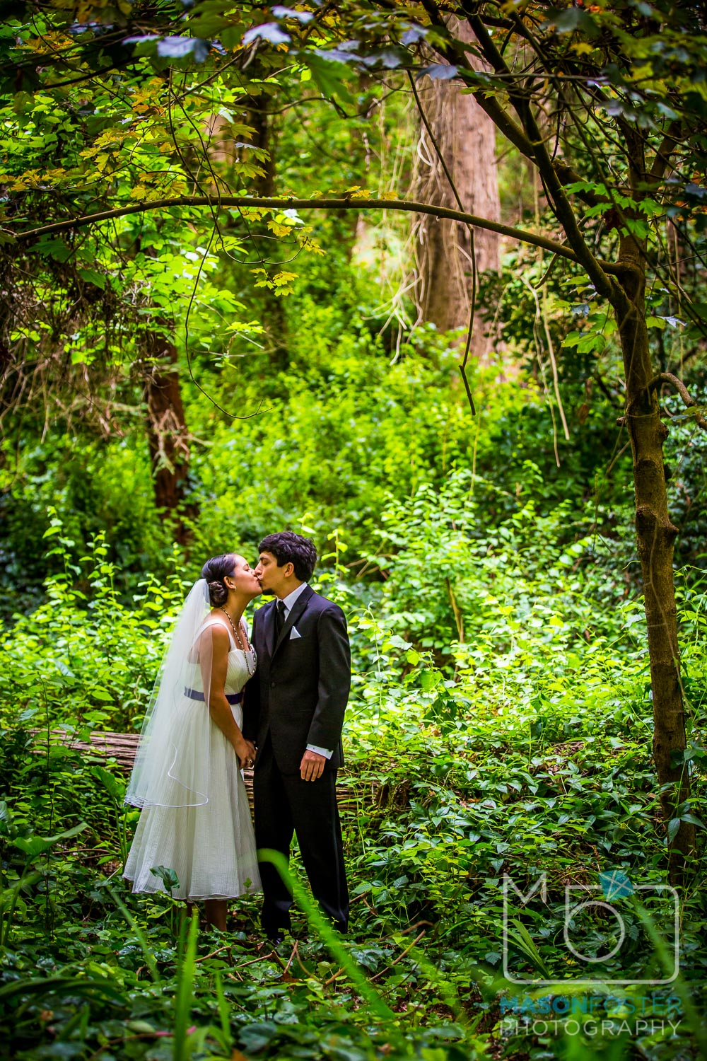 bride and groom portraits in stern grove| san francisco wedding photography