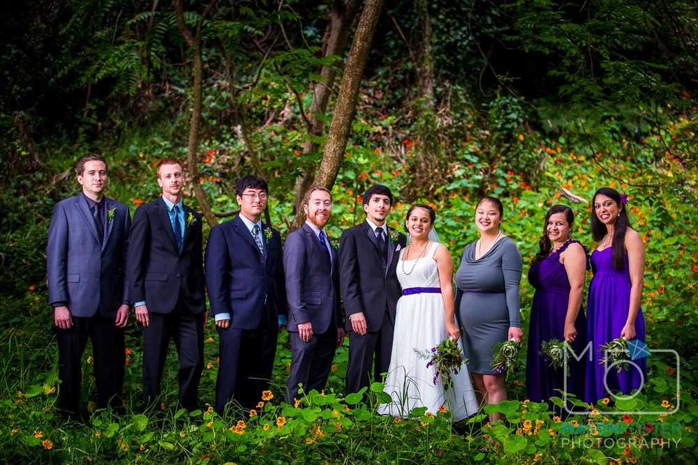 bridal party portraits | san francisco wedding photography