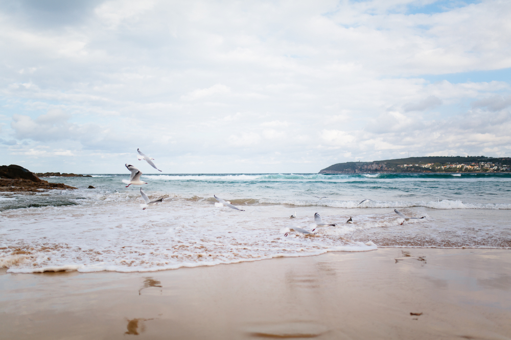 Endless Summer   Sophie Thompson Photography-5.jpg