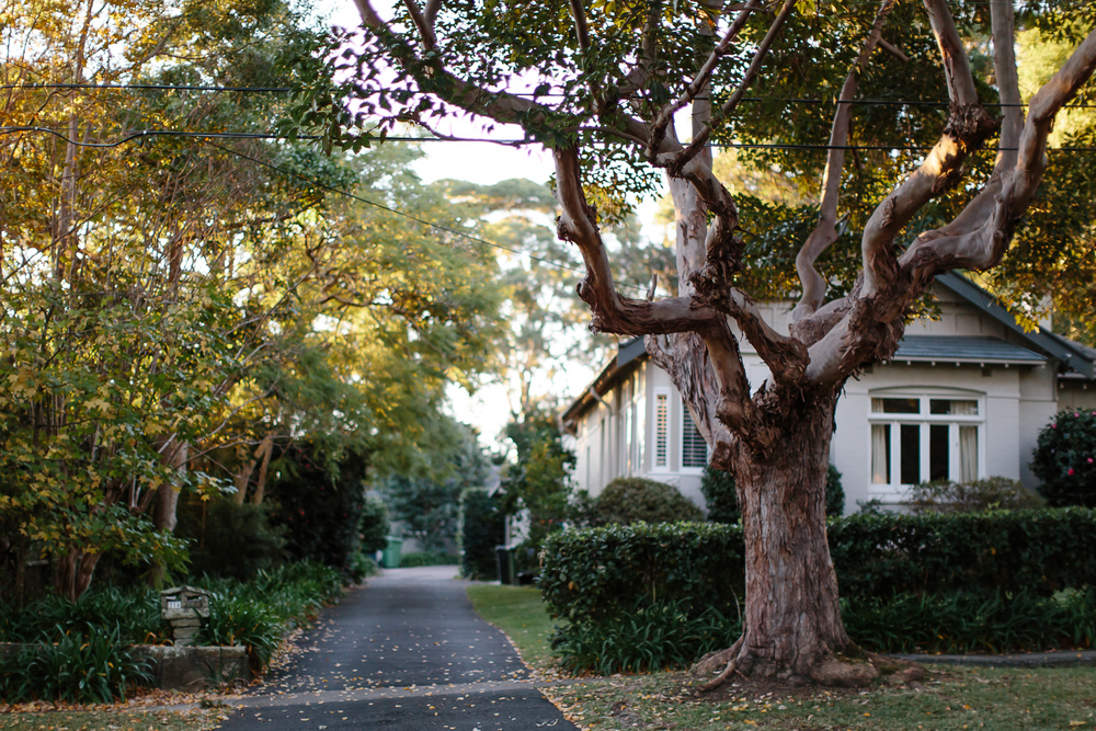 Neighbourhood-7.jpg