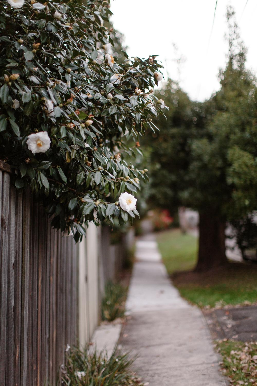 Neighbourhood-46.jpg