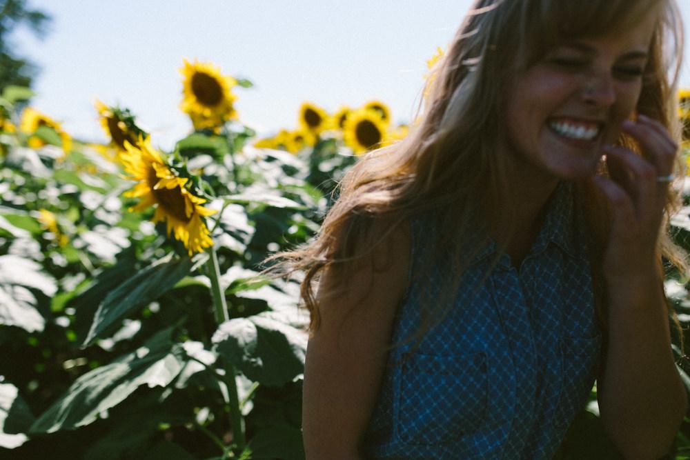Sunflower Field Grinter's Farm in Lawrence KS-4.JPG