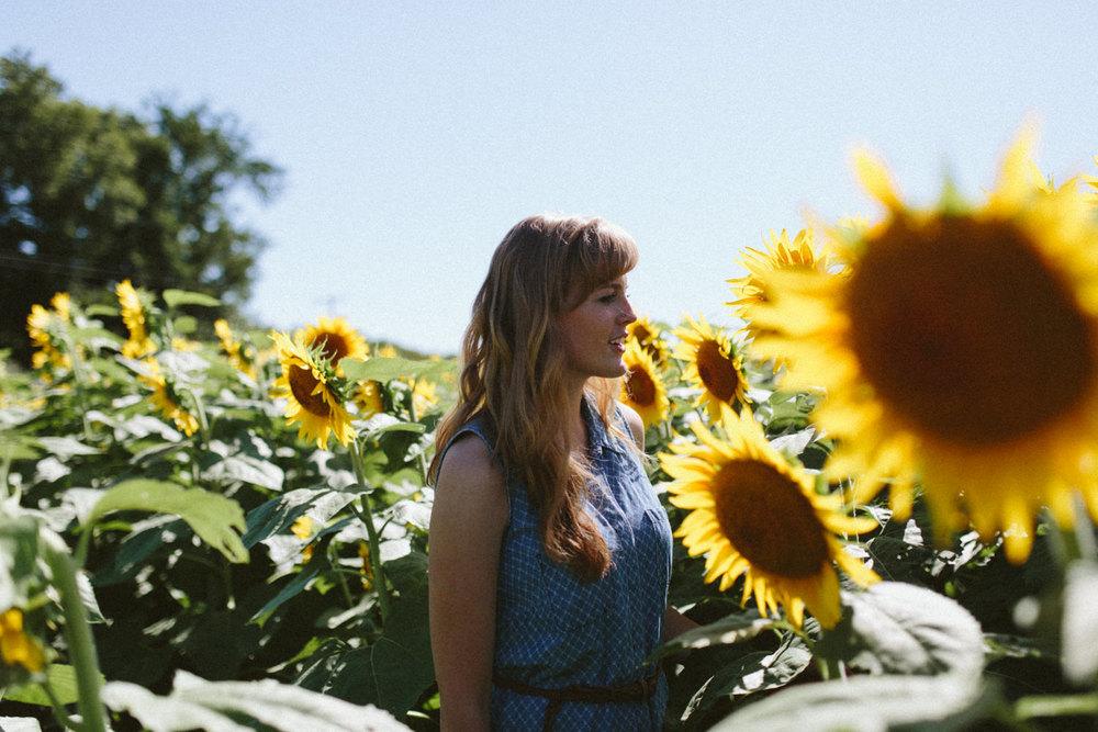 Sunflower Field Grinter's Farm in Lawrence KS-7.JPG