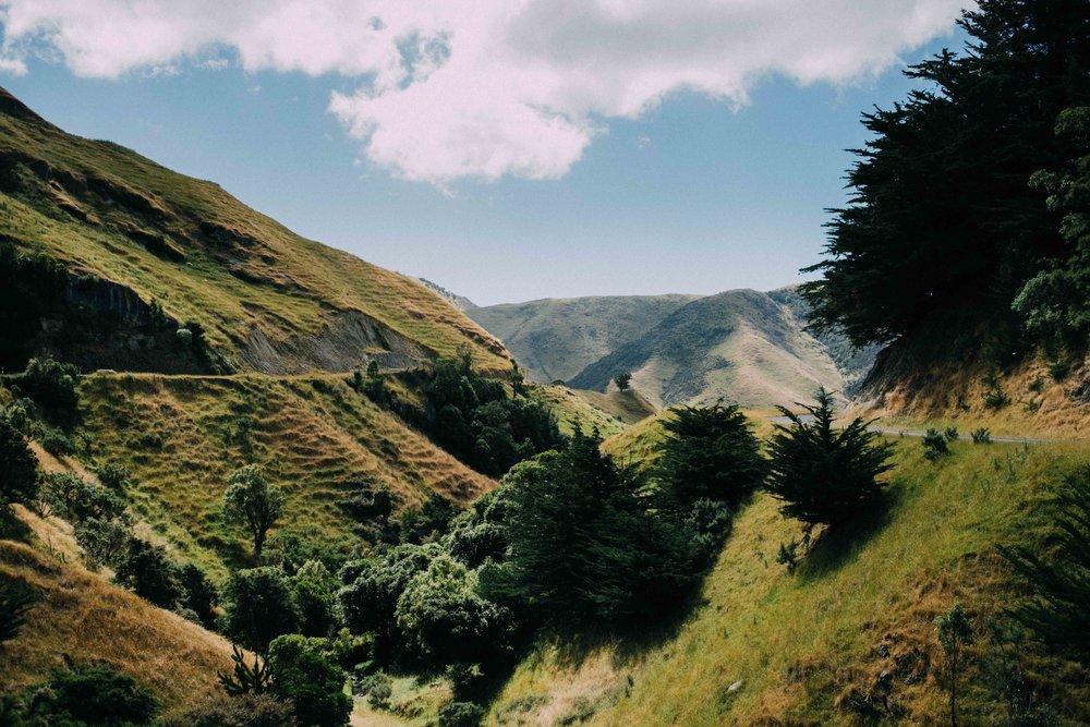 New Zealand small-35.jpg