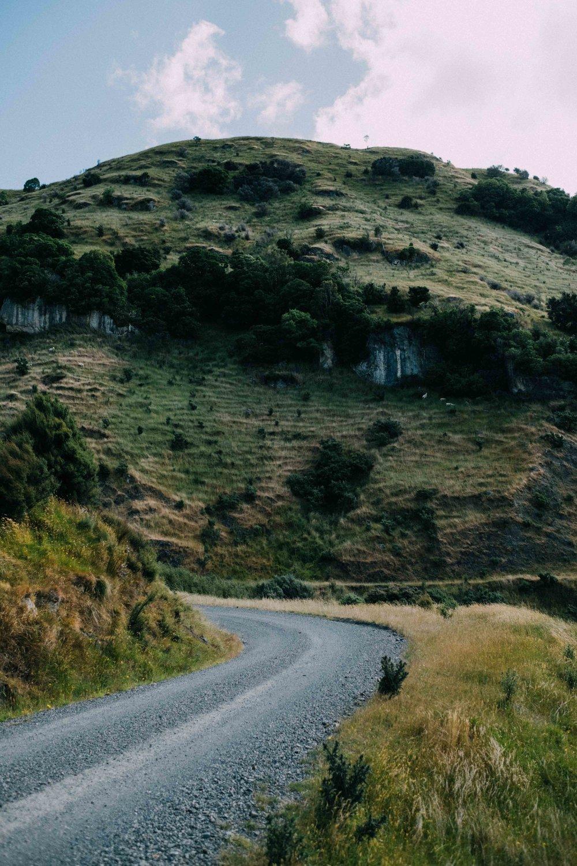 New Zealand small-36.jpg