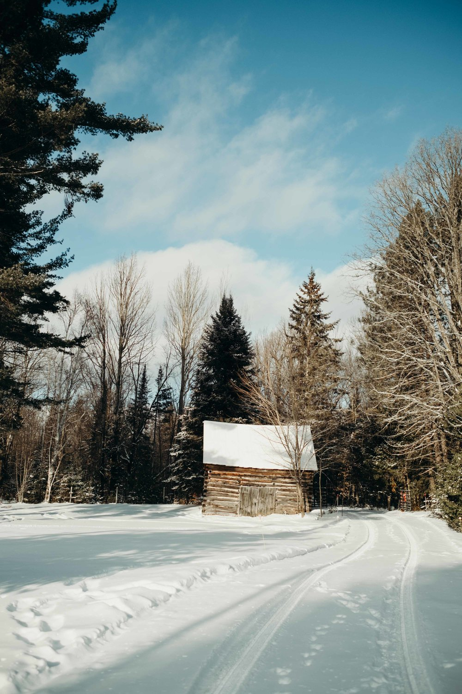 20171225_Toronto & Ottawa Travel Guide - See Canada_17.jpg