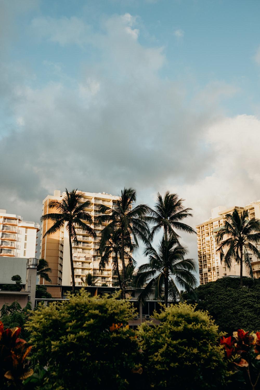 20180423_Visit Hawaii_Waikiki_2.jpg