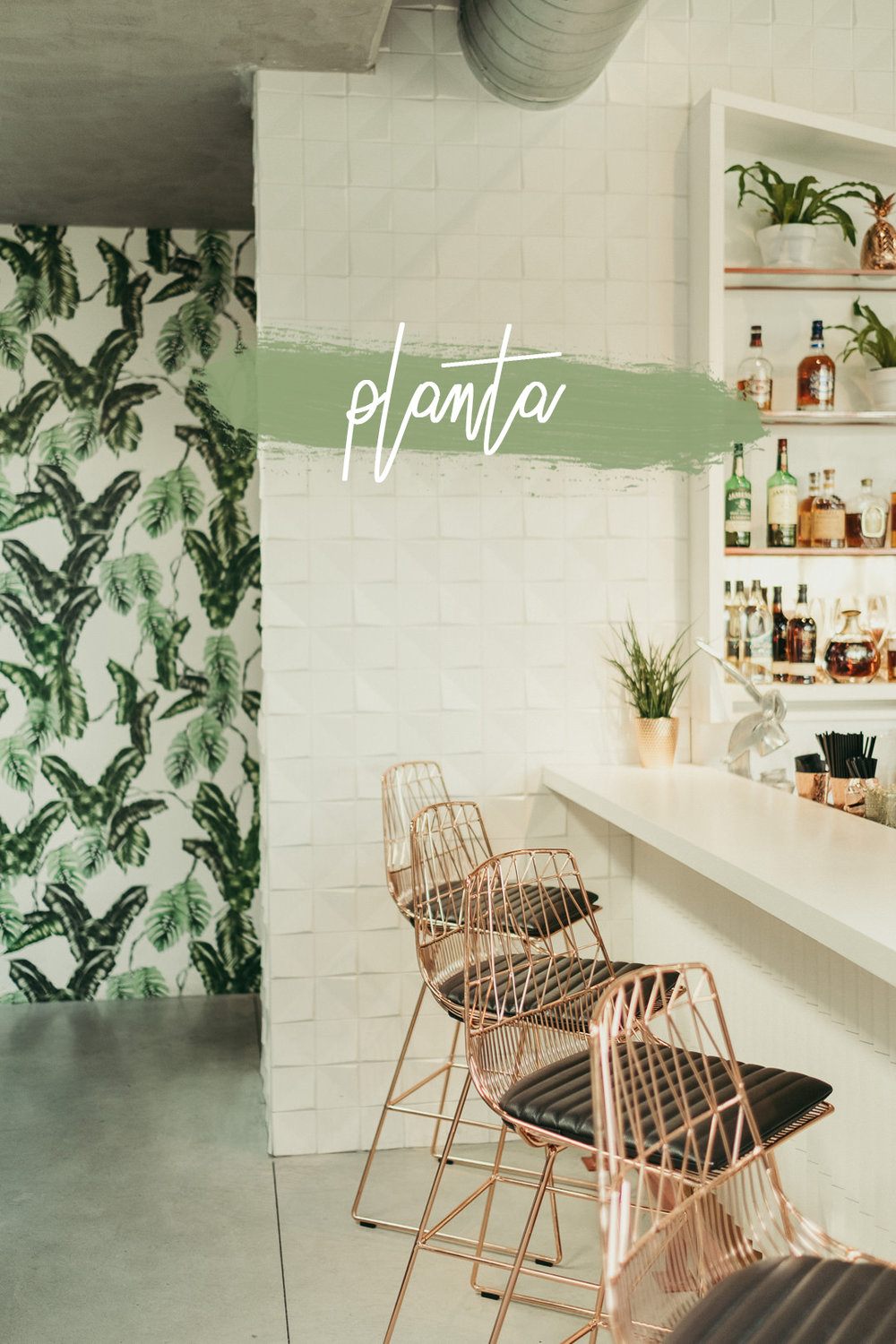 Planta - Miami Vegan Restaurant - Ali Happer Photo_32 copy.jpg