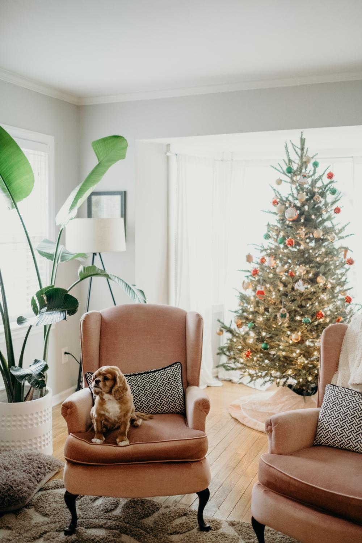 20181202_ChristmasCouplePhotographer_AliHapperPhoto_1.jpg
