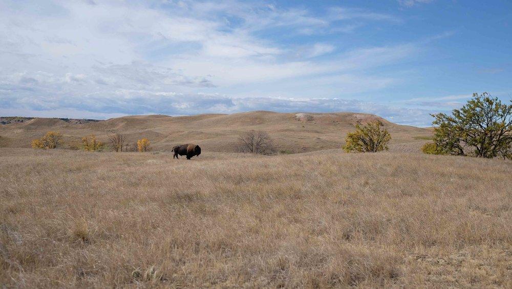 The Badlands, South Dakota