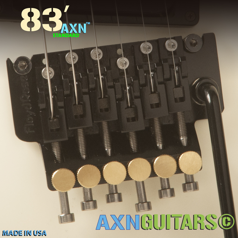 The AXN™- 83'S - Floyd Rose w/ Stainless Upgrades