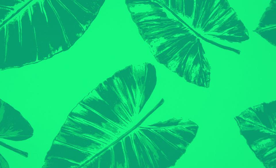 pattern161.1.jpg