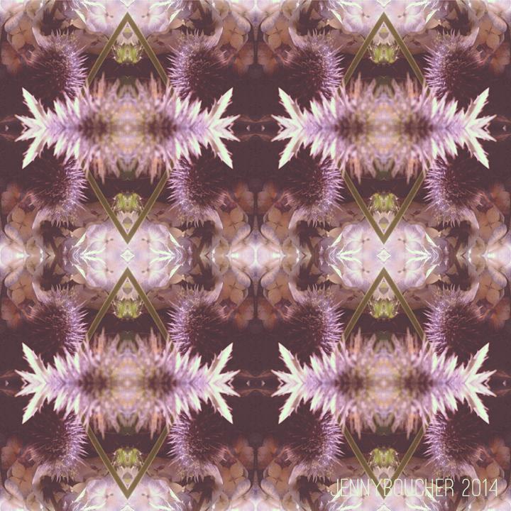 SURTEX-JENNYBOUCHER-strawflower-web.jpg
